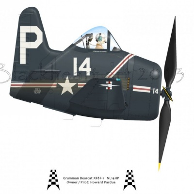 Grumman Bearcat Race 14