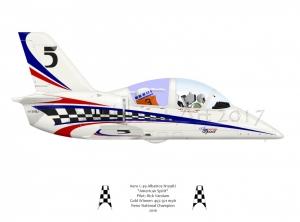 L-39 American Spirit
