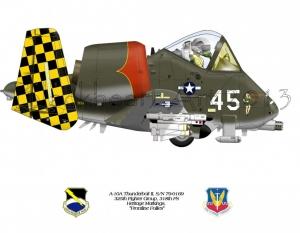 "A-10A Thunderbolt II ""Frontline Follies"" Heritage Scheme"