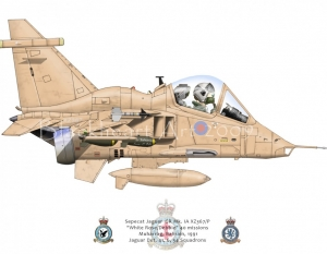 "Sepecat Jaguar ""White Rose/ Debbie"""