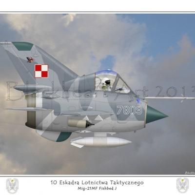 Polish Mig21