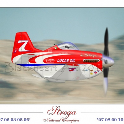 Strega National Champion Print Special 12x17