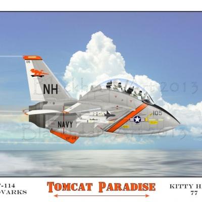 Tomcat paradise