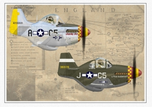 357th Mustangs