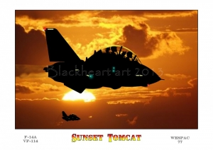 Sunset Tomcat, Special print Large Sizes available