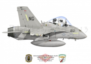 F-18C Custom Print