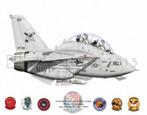 VF-103 F-14B