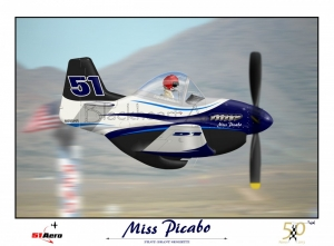 Miss Picabo Special team print