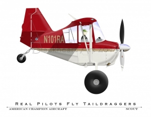 American Champion Aircraft Scout