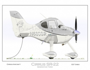Cirrus SR-22 Tied Down