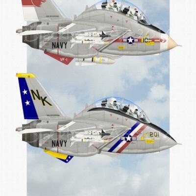 CVW-14 Tomcats