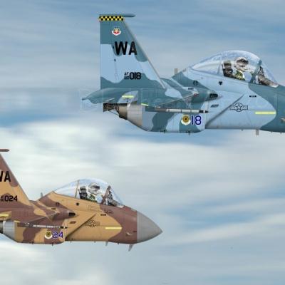F-15 Aggressors Nellis AFB