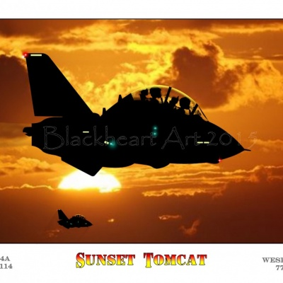 Sunset Tomcat Special Print Large Size available