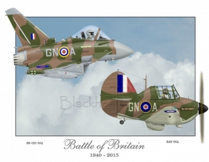 """Battle of Britain RAF"" Special Print 12x17"