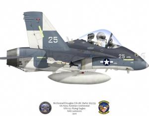 McDonnell Douglas F/A 18C Centennial Scheme VFA-122