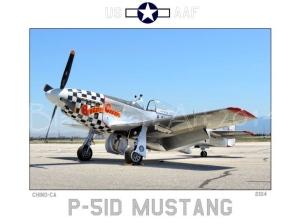 P-51D 78th FG