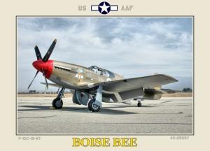 P-51C Boise Bee