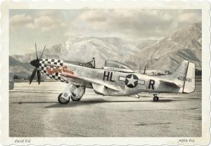 P-51D Buzzin Cuzzin Vintage