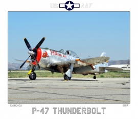 Hun Hunter P-47