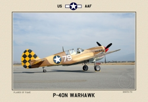P40 N  Warhawk