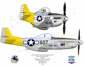 "North American P-51D ""Dolly / Spam Can"""