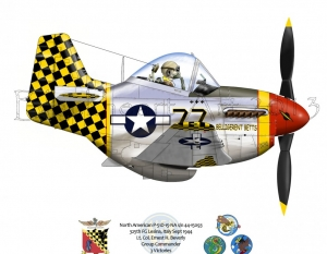 P-51D 325th FG