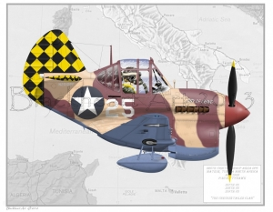 325th P40F with map 12X17 Only