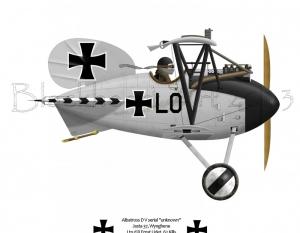 DV Albatross