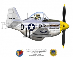 "North American P-51D ""Fascinatin Fanny"""