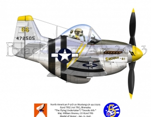 "North American P-51D ""The Flying Undertaker"""