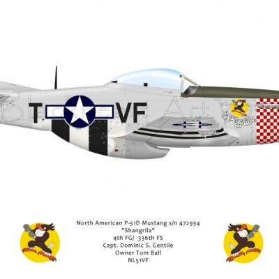 P-51D Shagrila