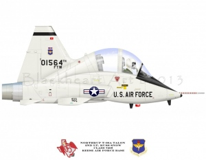 T-38 Talon 64th FTW
