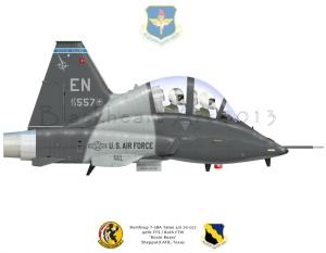 "Northrop T-38A ""Boxin Bears"""