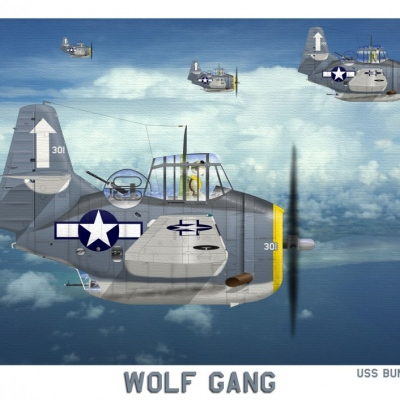 VT-84 wolfgang